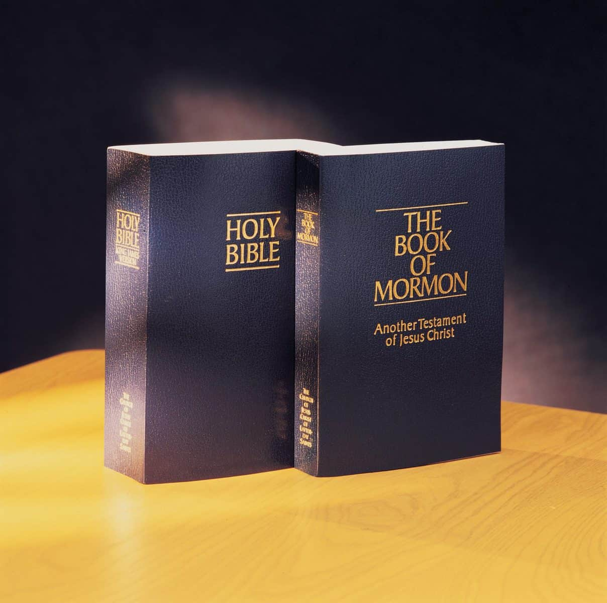 Bible and The Book of Mormon